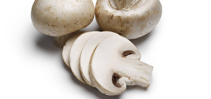 whiteMushrooms2